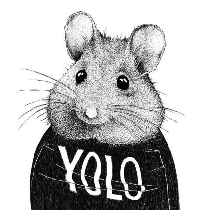 the YOLO Mouse (br) Ink on paper (br) 17 x 17 cm